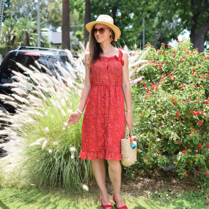 SHEIN Ruffle Strap & Hem Button Up Dress, Lucky Brand Hat, Straw Hat, Red Platforms (2)